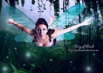 Fairy of Wood