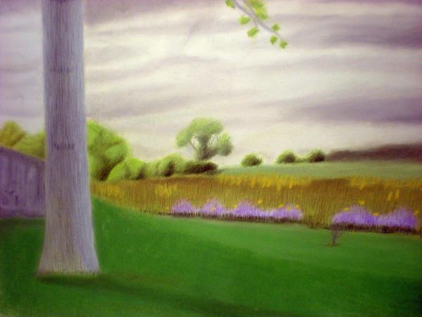 Color Landscape by 130Dk