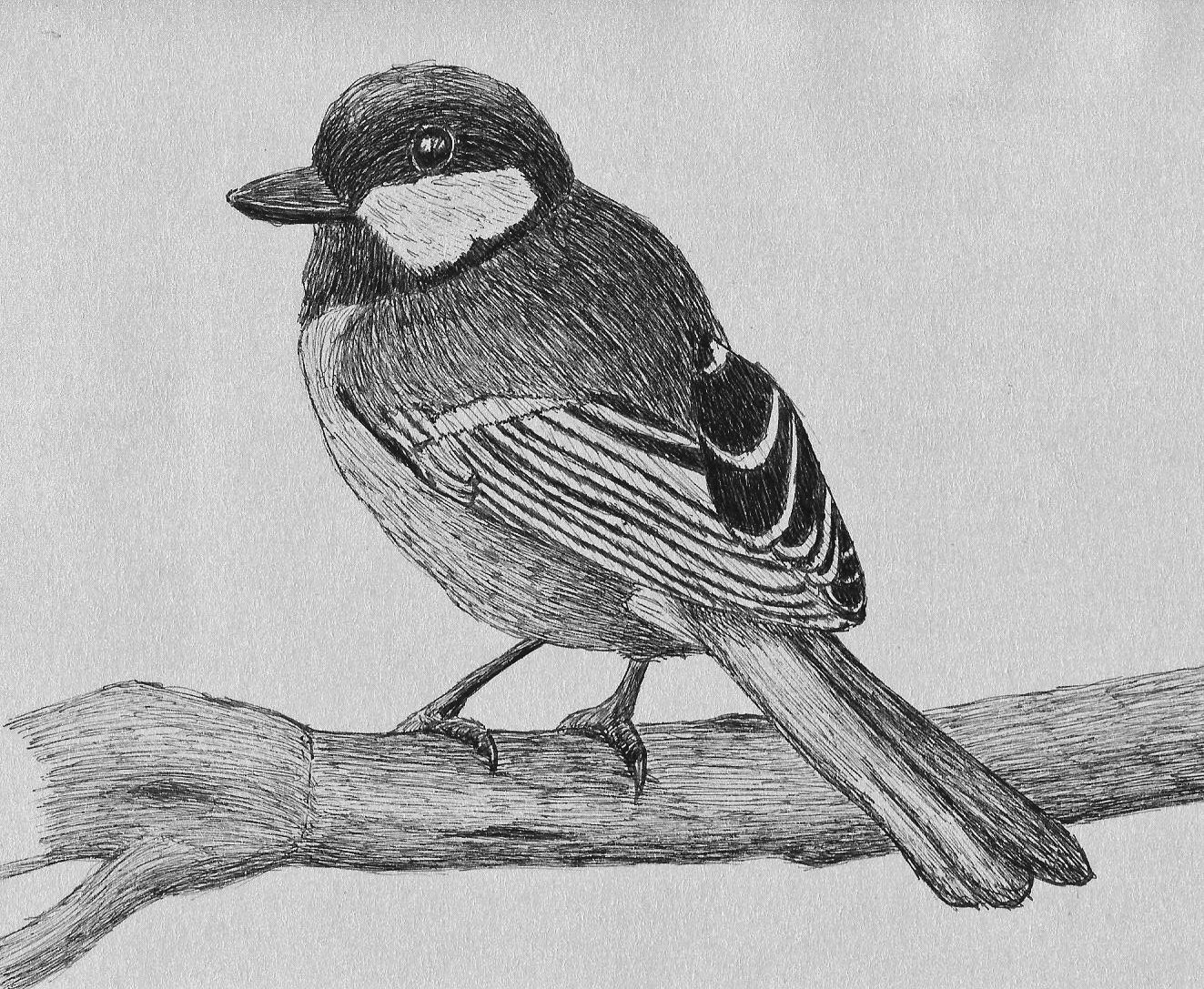 Bird by 130Dk