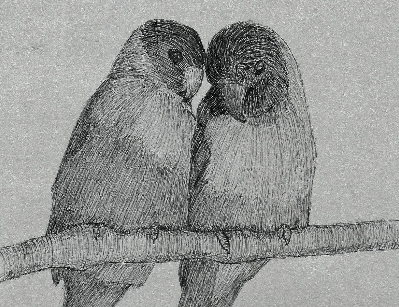 Random Bird 3 by 130Dk