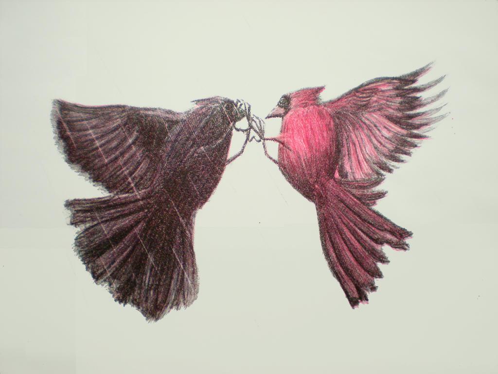 Window Cardinal by 130Dk on DeviantArt Cardinal Flying Into Window