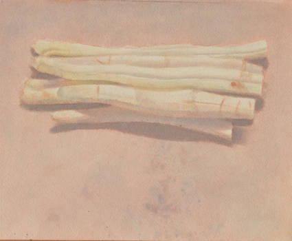 Asparagus  watercolor  22 X 17 cm by Oblomov-Ilya1956