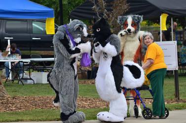 JJ, Dakota and Tycho Ausie at the Park