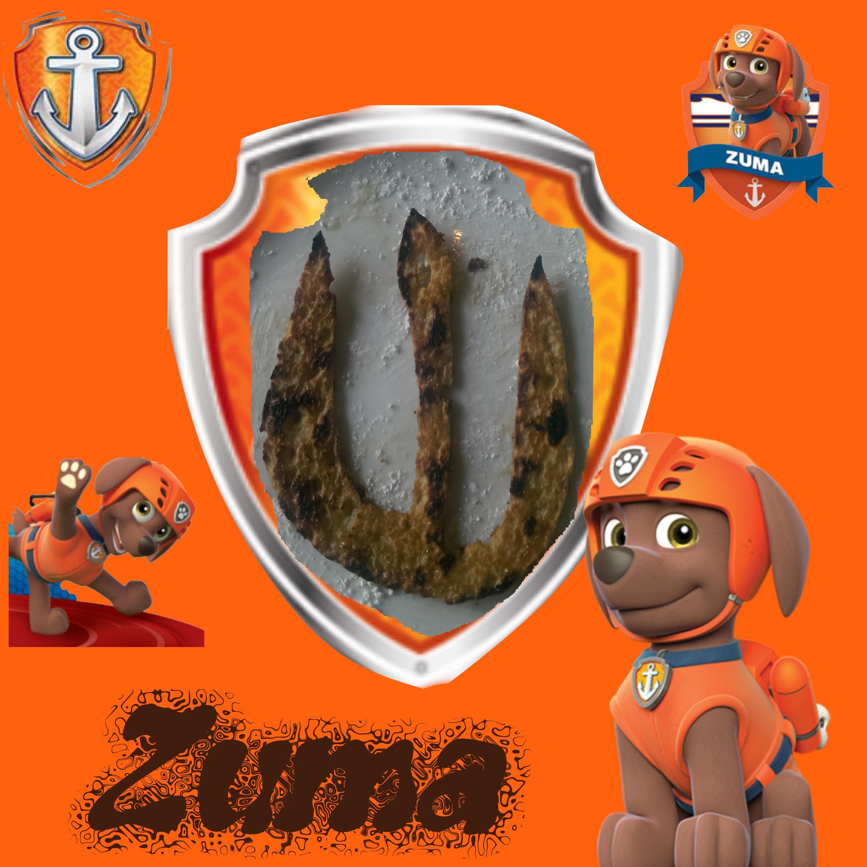 Zuma Paw Patrol Birthday Cake