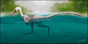 Swimming Raptor