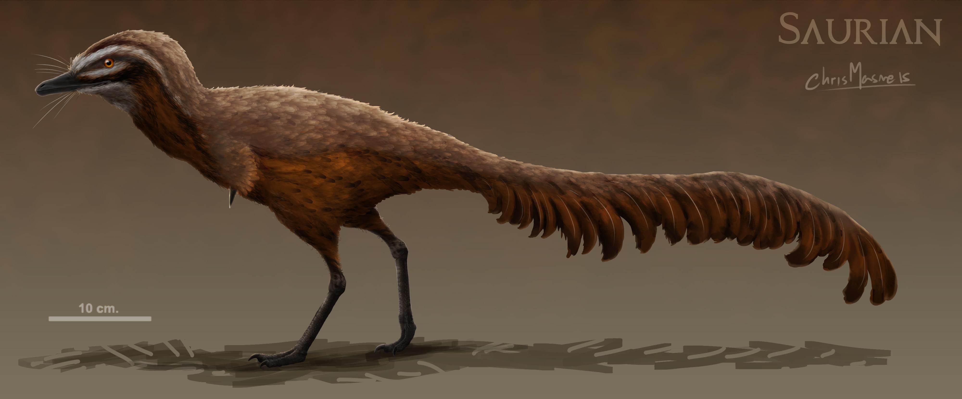 Pachycephalosaurus Saurian