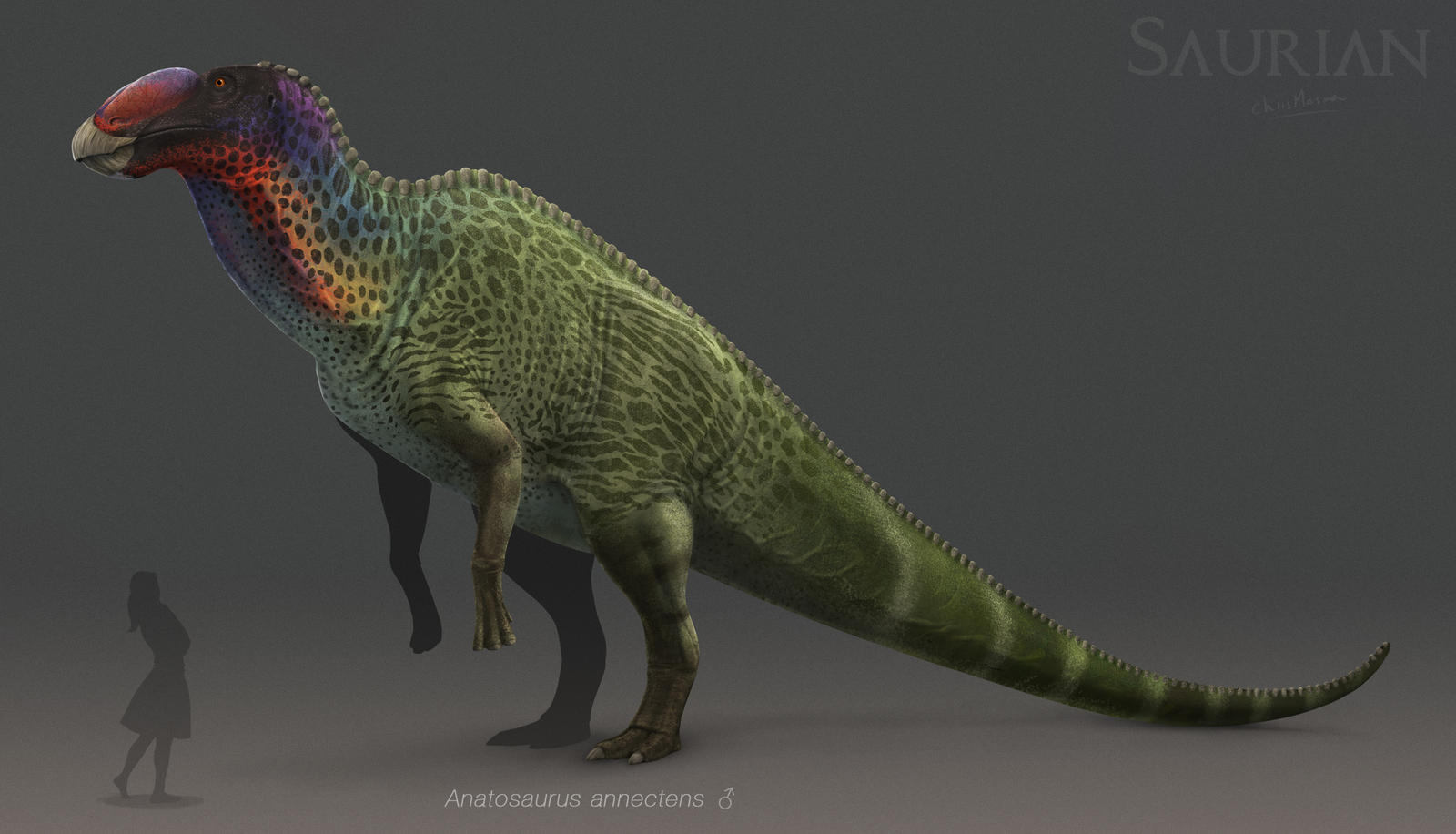 Anatosaurus by chrismasna on deviantart for Painting games com