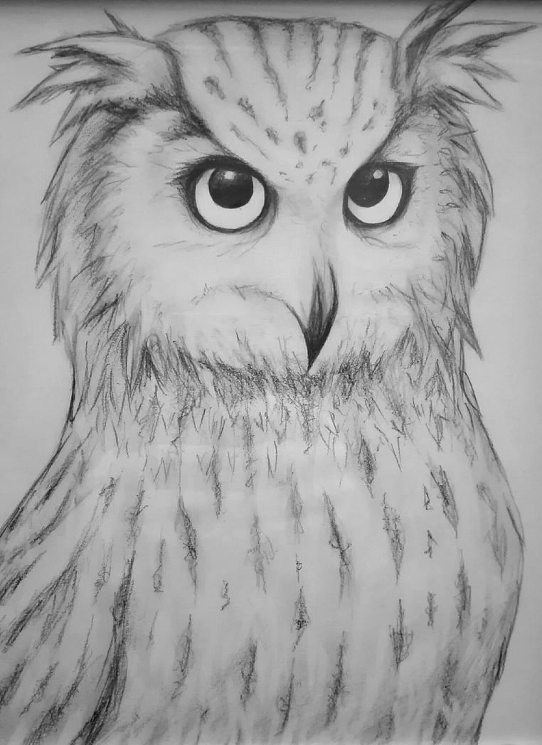 Owl by Indarkeria