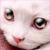 Kitty eye Plz