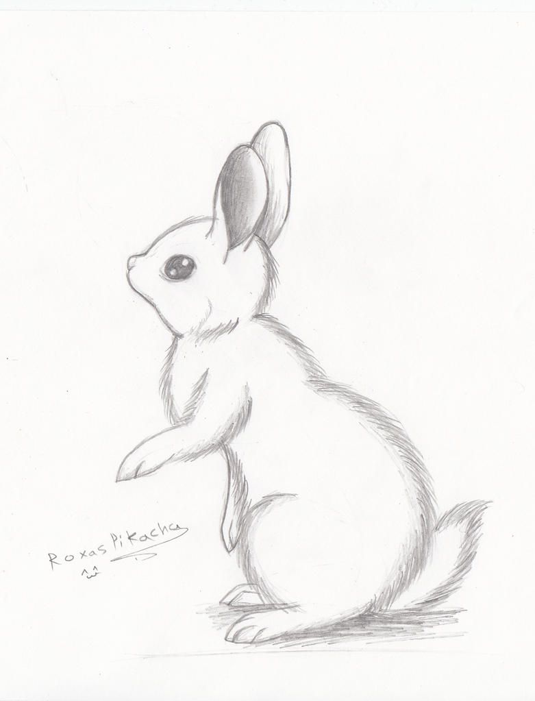 My little bunny by RoxasPikachu
