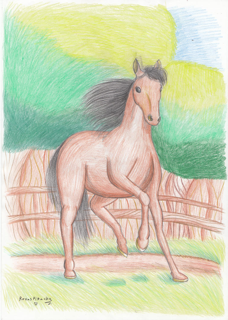 happy horse by RoxasPikachu