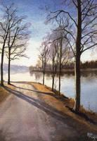 November Sun by Flingling