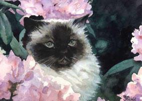 Flower Cat by Flingling