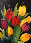 Tulip Drops