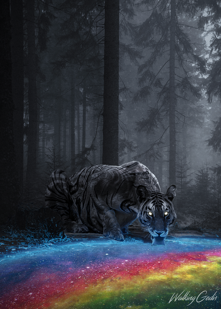 Tiger Lick by WalkingGedis