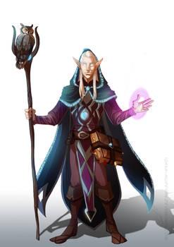 commission, High elf sorcerer