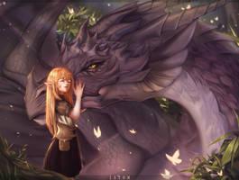 Dragon affection
