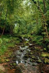 Dschungel Schweiz by Ashayaa