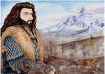 The Lonely Mountain... our home