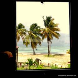 BY THE BUS' WINDOW by montvalerien