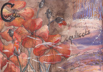 Poppies and wind 1 by Liloux-illustration
