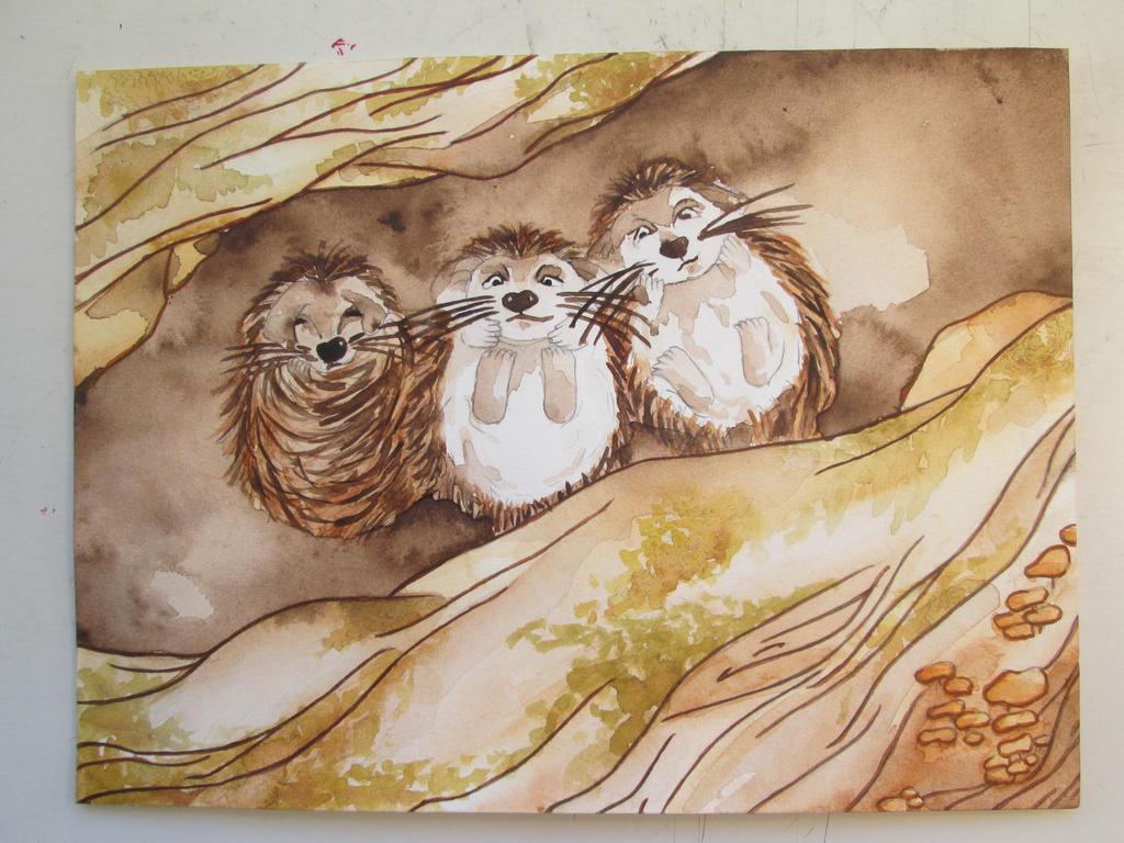 Little Hedegehods by Liloux-illustration