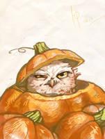 Owl in a pumpkin by Ptich-ya