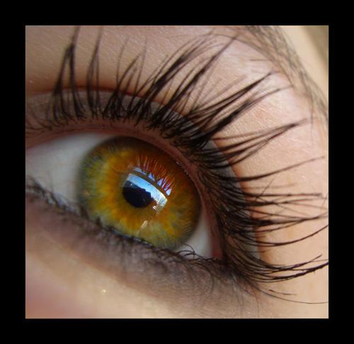 Behind These Hazel Eyes by padfootsmyhero on deviantART