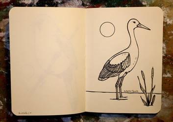 Inktober 24 - White stork by CathM