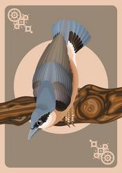 Eurasian nuthatch card by CathM