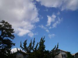 clouds, again