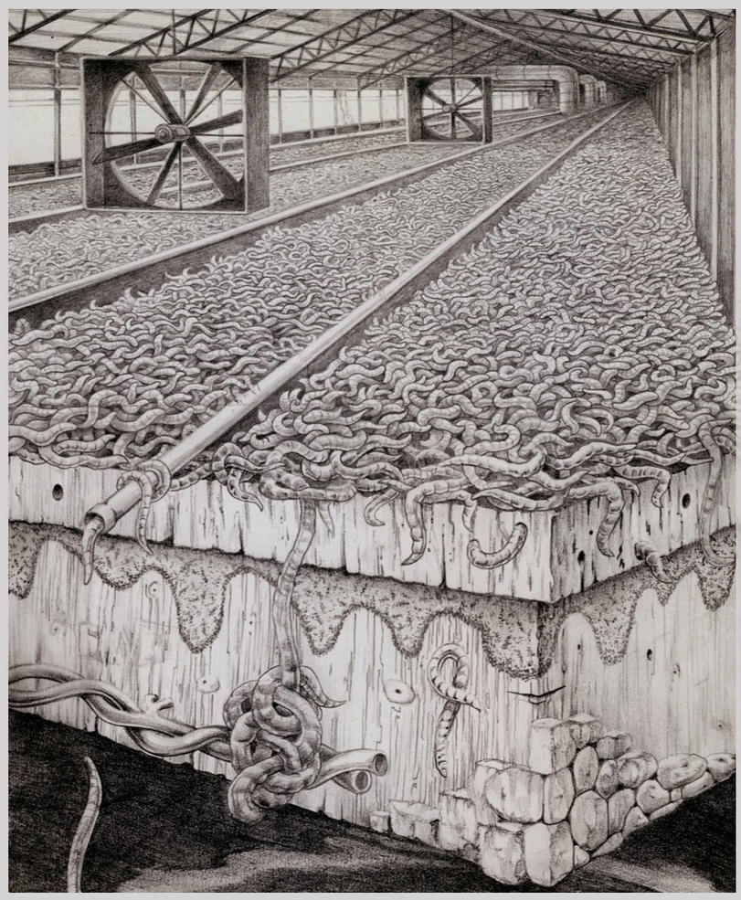 Anatomy of a worm factory by Bernardumaine on DeviantArt