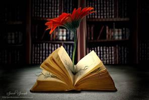 Keep Reading by Jacob-Joseph