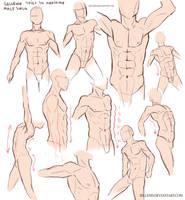 Male Torso Practice by Sellenin