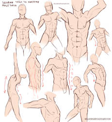Male Torso Practice by Sellenin