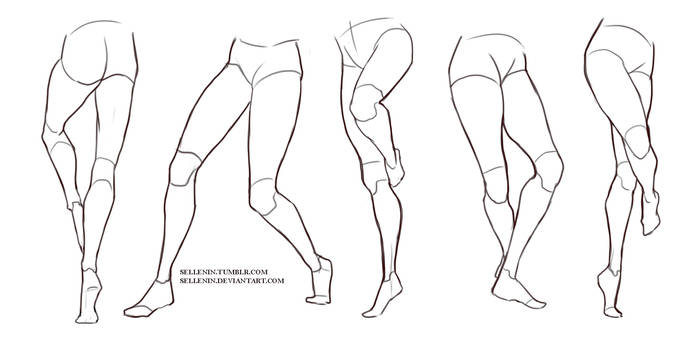 Legs reference