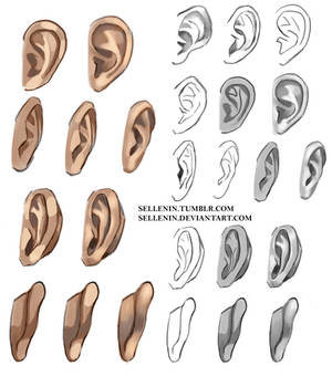 Ears reference