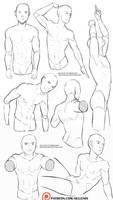 Male torso reference