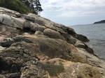Rock Beach 5
