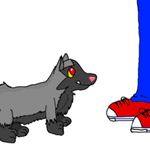 Poochyena wants a cookie :D by Dogtorwho