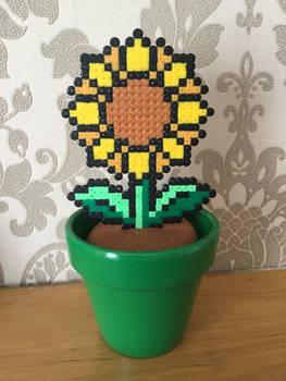 Hama Bead Sunflower Pot
