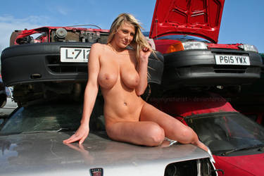 Car with mascot for sale by Singingnaturist