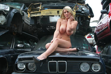Me and my cars by Singingnaturist