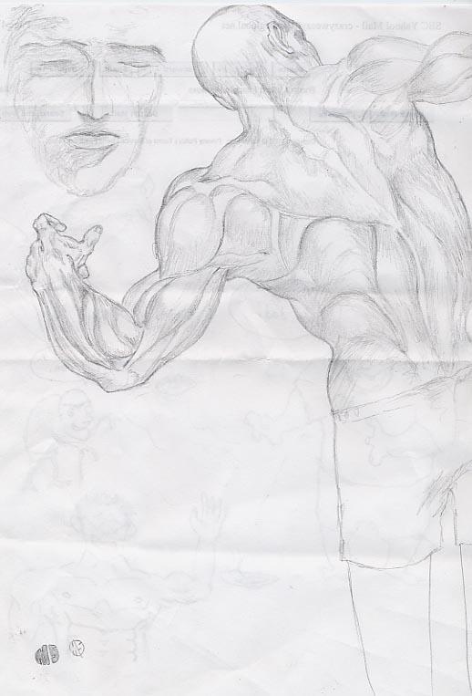 Anatomy picture, back by Jubhubmubfub