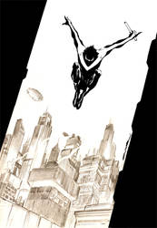 Nightwing by Cinar