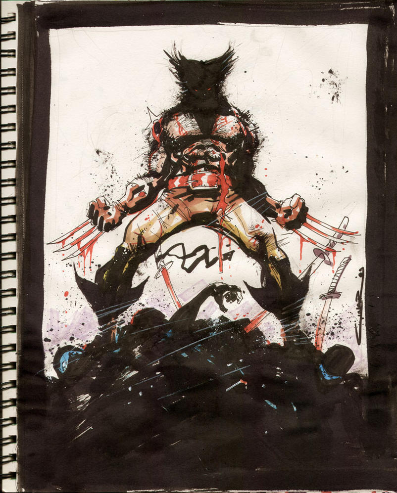 Sketch 16 : Wolverine by Cinar
