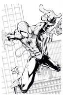 Avila spiderman inks by TonyKordos