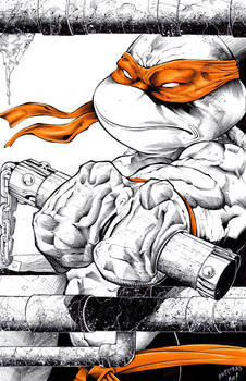 Michaelangelo commission inks and colors