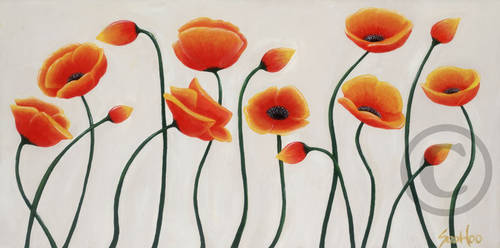 Long-poppies