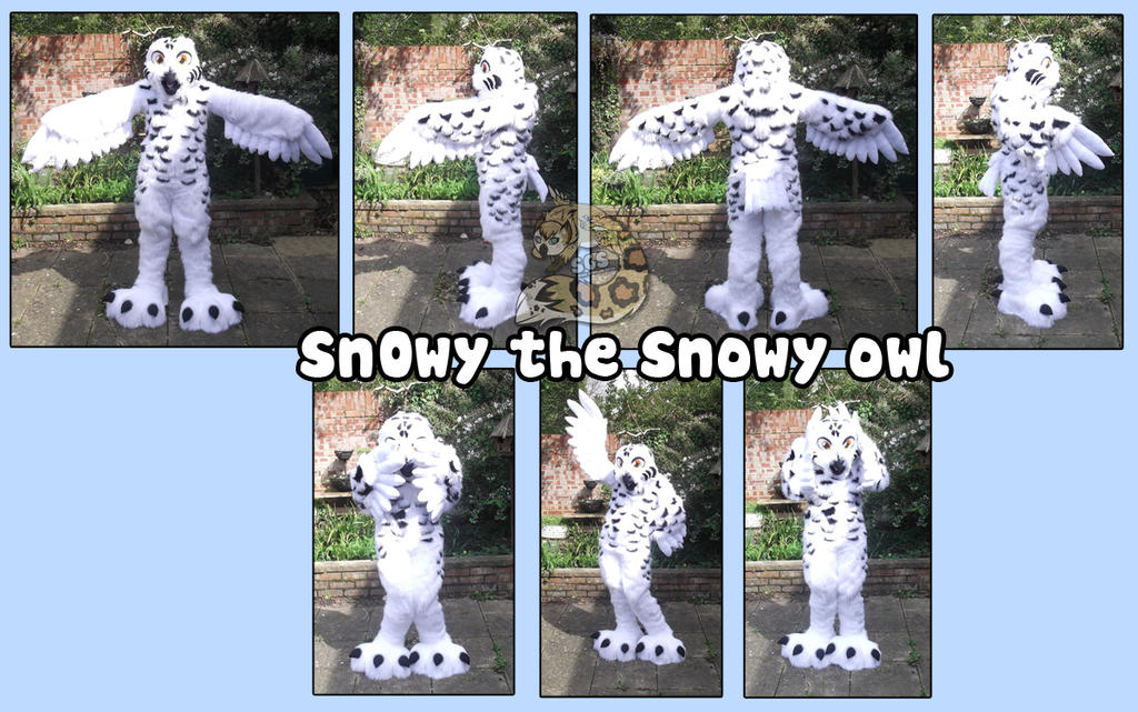 Snowy owl by SnowGryphonSuits ...  sc 1 st  SnowGryphonSuits - DeviantArt & Snowy owl by SnowGryphonSuits on DeviantArt